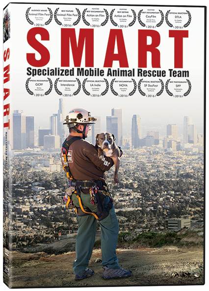 smart-3d
